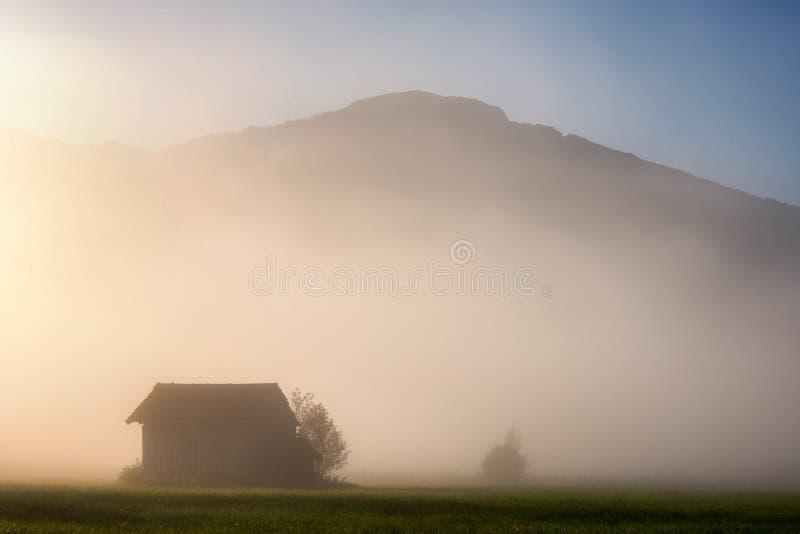 Foresta nebbiosa durante il giorno di autunno con bella alba sopra i picchi di montagna, alpi bavaresi, Baviera, Germania fotografie stock libere da diritti