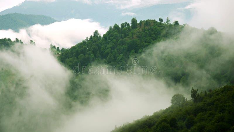 Foresta nebbiosa e nuvole sopra la giungla fotografie stock libere da diritti