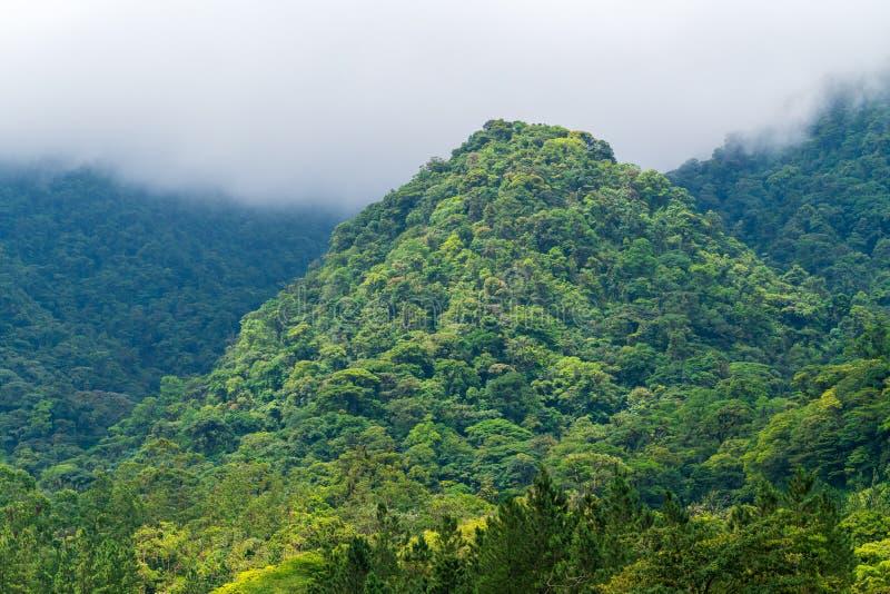 Foresta pluviale che copre una piccola collina in una valle nei pressi di Arenal, Alajuela, Costa Rica immagine stock