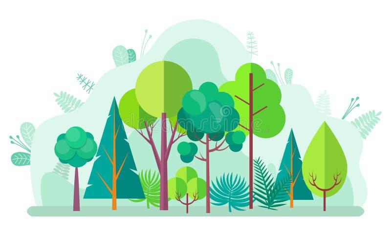 Foresta verde con l'albero, gli abeti dei cespugli e le betulle royalty illustrazione gratis