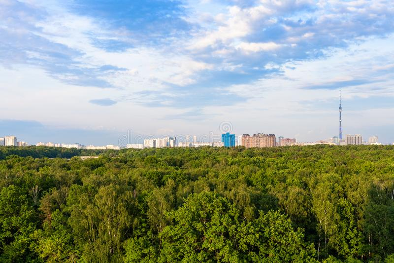 foresta verde e case urbane nel giorno di estate immagine stock