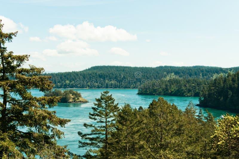 forested öar för kustlinje royaltyfria bilder