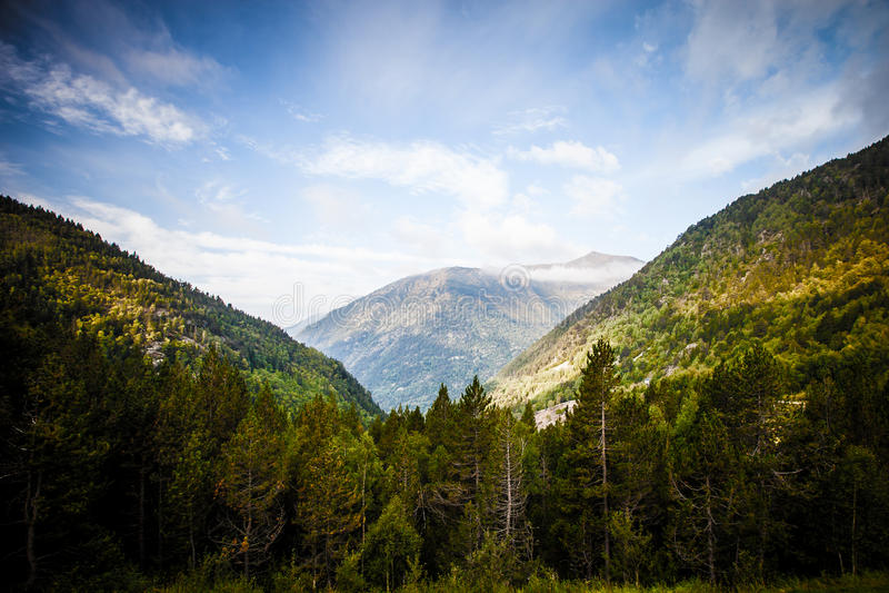 Forested dalar mellan bergen _ arkivfoto