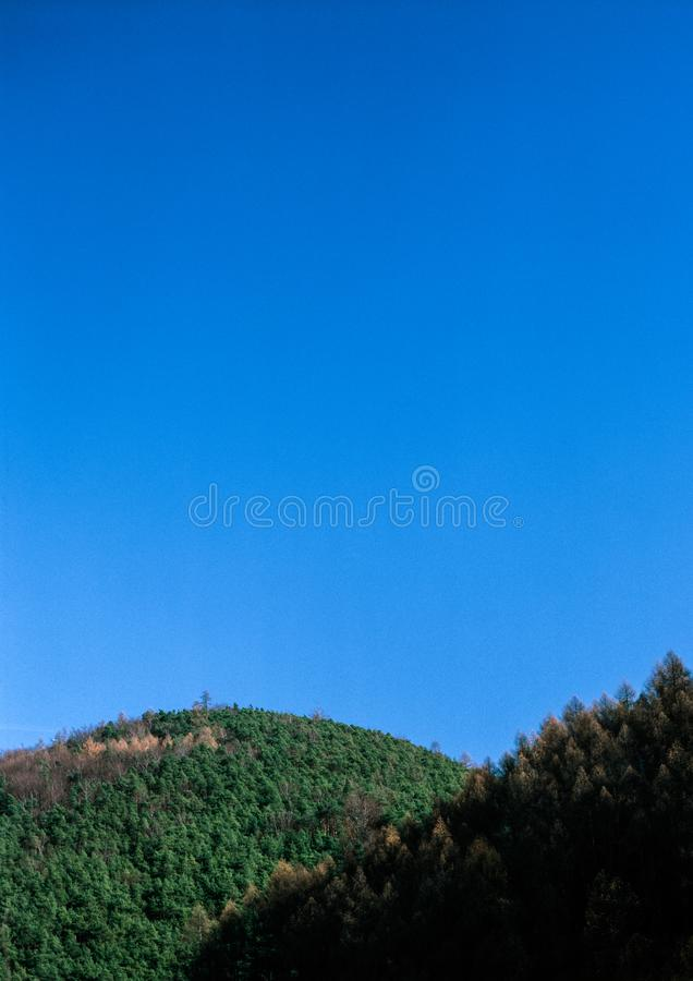 Forested hills. Illustrations,woods landscapes royalty free stock photo