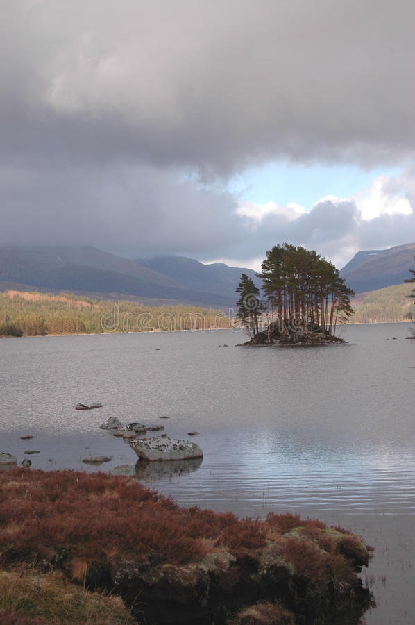 Forested Island on Loch Ossian stock photography