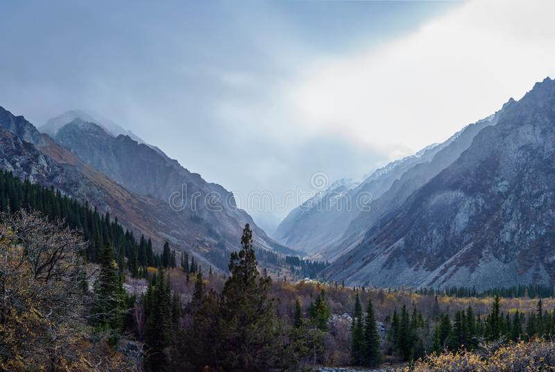 Forested mountain slope stock image