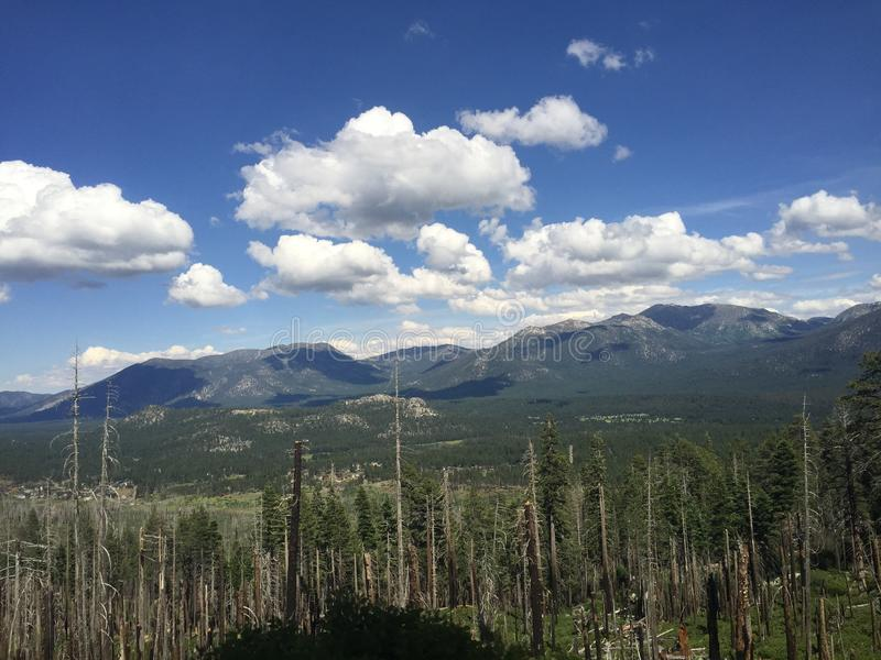 Forested mountains and sky stock image