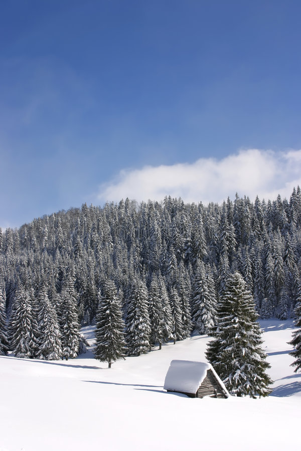 Forested Mountains In Winter Stock Photos