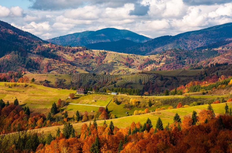 Forested rural area on rolling hills in autumn royalty free stock image