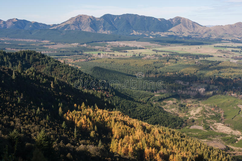 Forested slopes above Hanmer Springs in early autumn stock photo