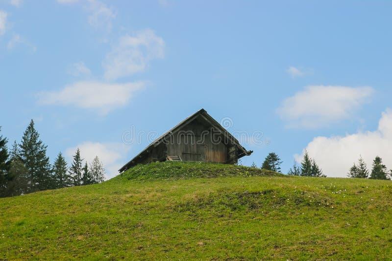 Forester& x27; cabine de s na floresta fotografia de stock