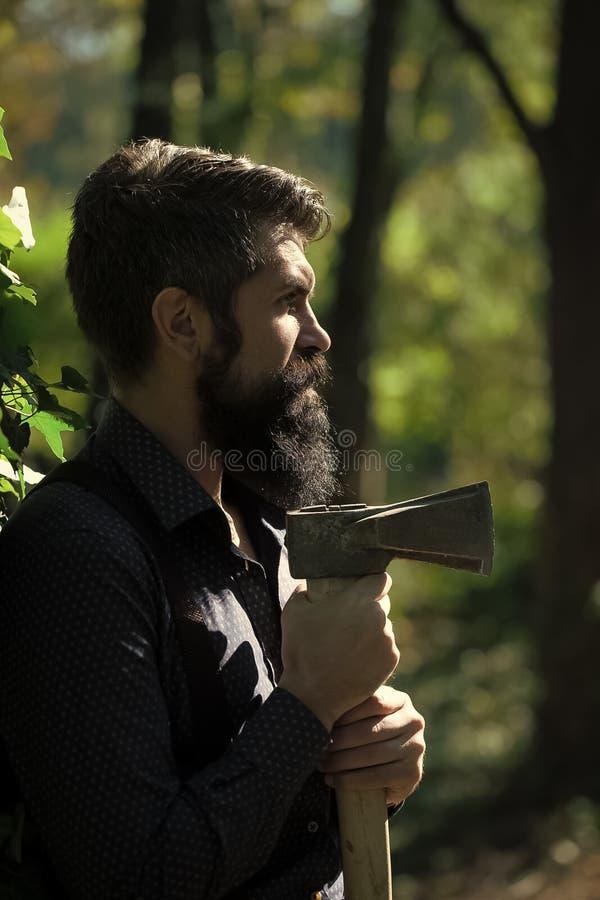 forester Registador masculino na floresta fotografia de stock royalty free