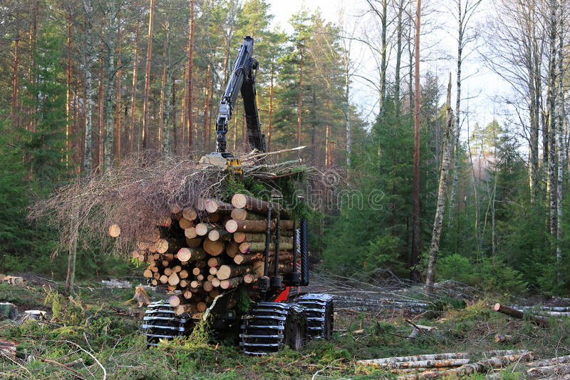 Forestry forwarder Stacks Up Wood royalty free stock images