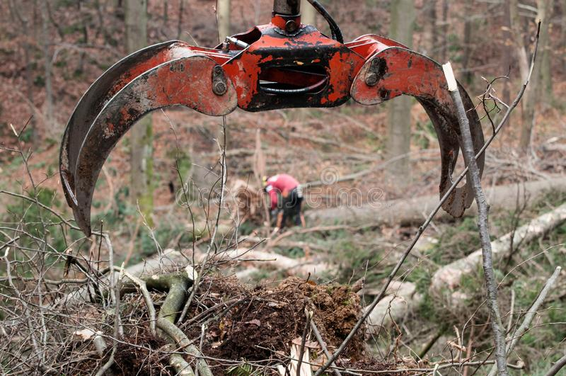 Forestry grapple for picking up timber and forestry worker in background. Forestry, machinery, environment, workers and protective gear concepts royalty free stock photography