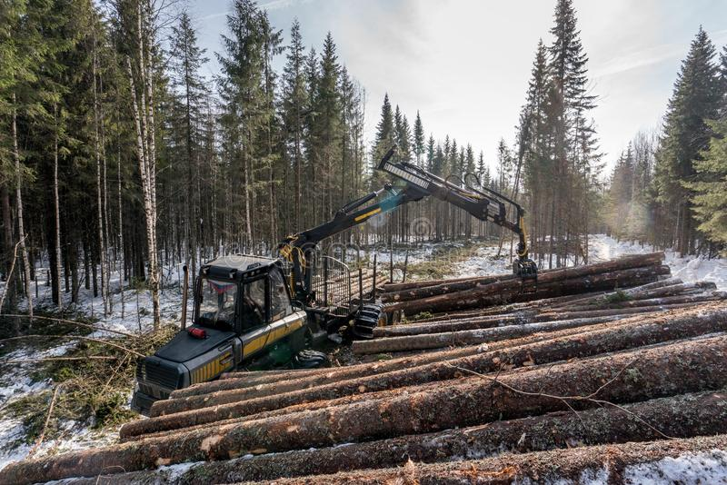 Forestry. Logger loads timber in winter woods royalty free stock image