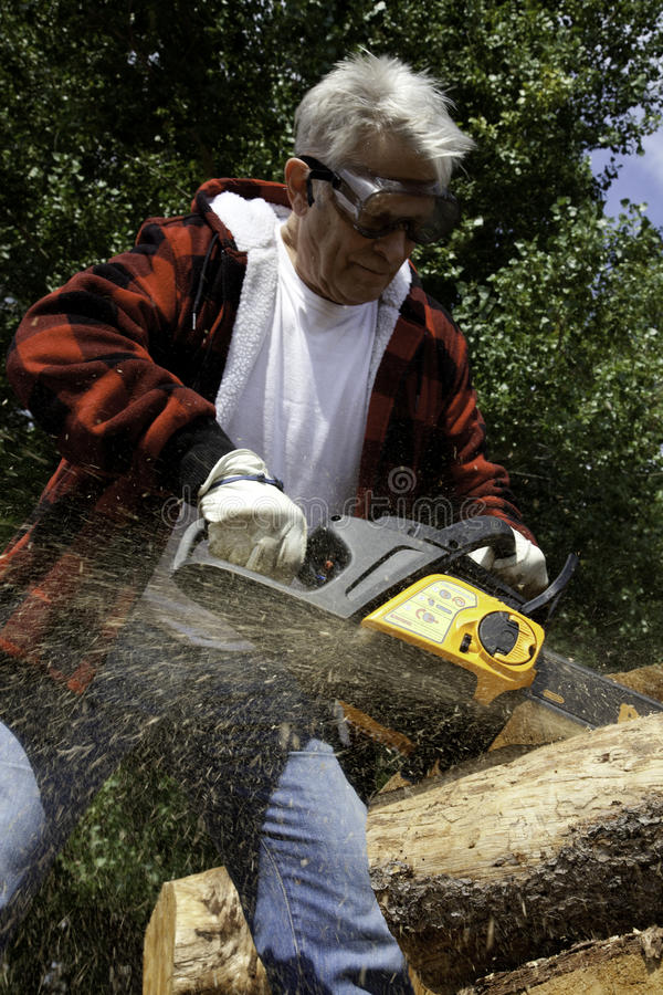 Free Forestry Worker Cutting Tree With Chainsaw Royalty Free Stock Images - 29668689