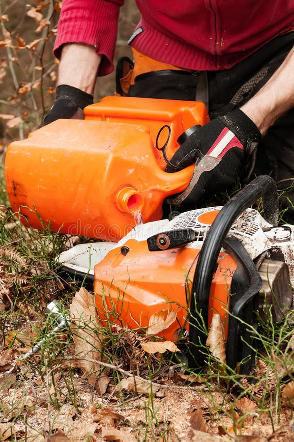 Forestry worker filling up chainsaw with gasoline fuel stock photo