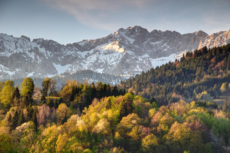 Forests below snowy Wettersteinwand ridge in Bavaria Germany. Deciduous and evergreen forests below sharp snowy Wettersteinwand ridge of Wetterstein mountains in royalty free stock images