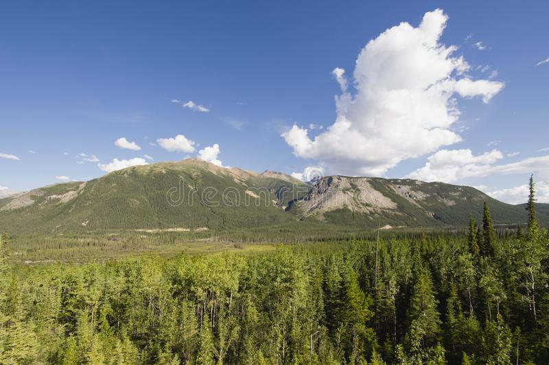 Forests and mountains in Muncho Lake Provincial Park stock photography