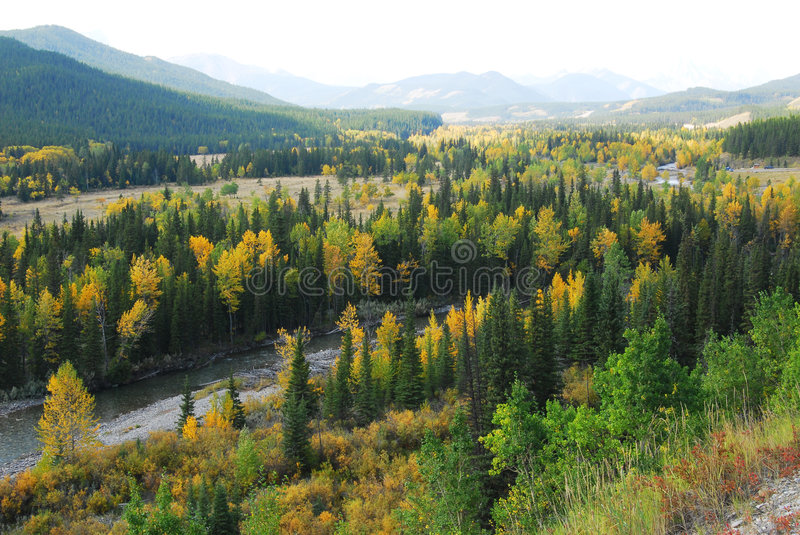 Download Forests in river valley stock photo. Image of country - 6953800
