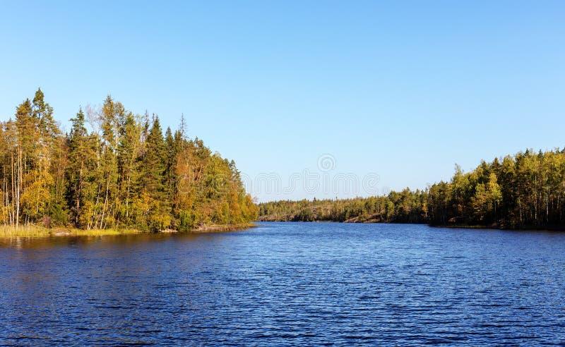 Forestsee im Herbst lizenzfreie stockfotos