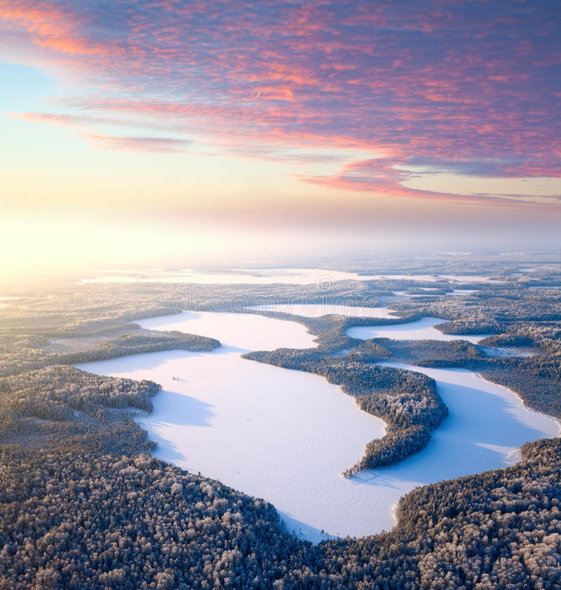 Forestseen am Wintertag lizenzfreie stockbilder