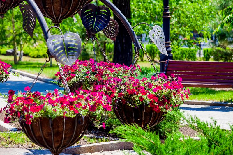 Forged metal architectural form with petunias pots closeup stock image