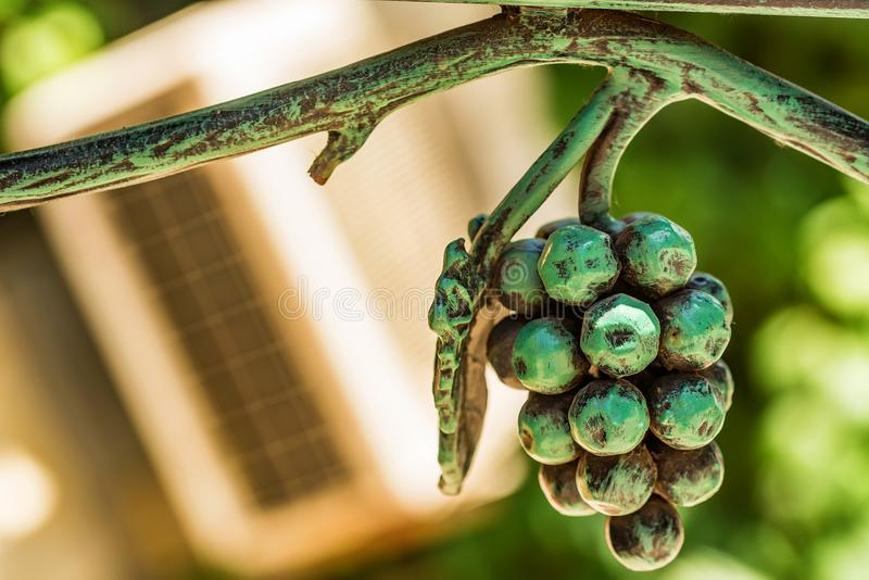 Forged metal bunch of grapes interior decoration stock photos