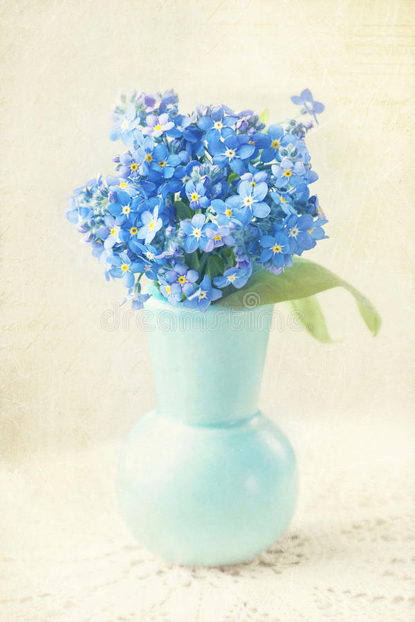 Download Forget me not flowers stock photo. Image of background - 30995334