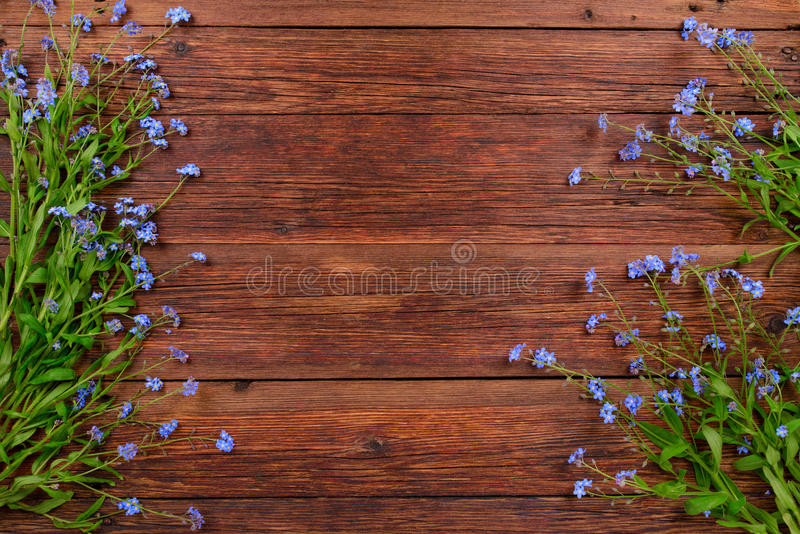 Forget-me-not flowers on wooden background, copy space royalty free stock photo