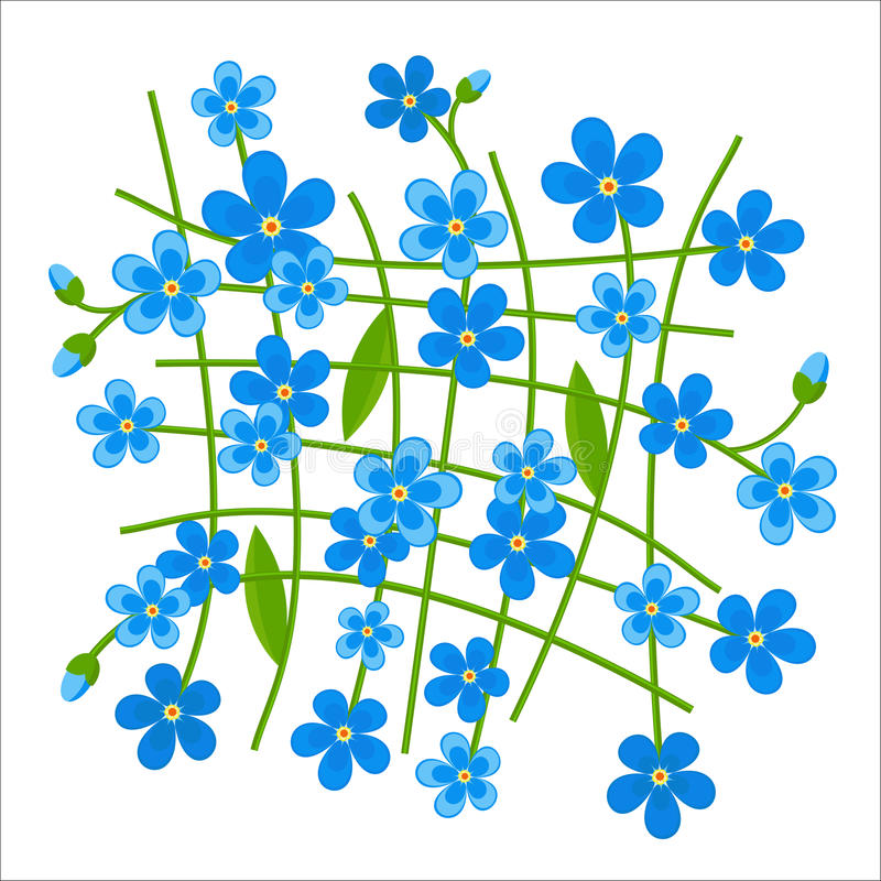 Forget-me-not Pattern Stock Photo