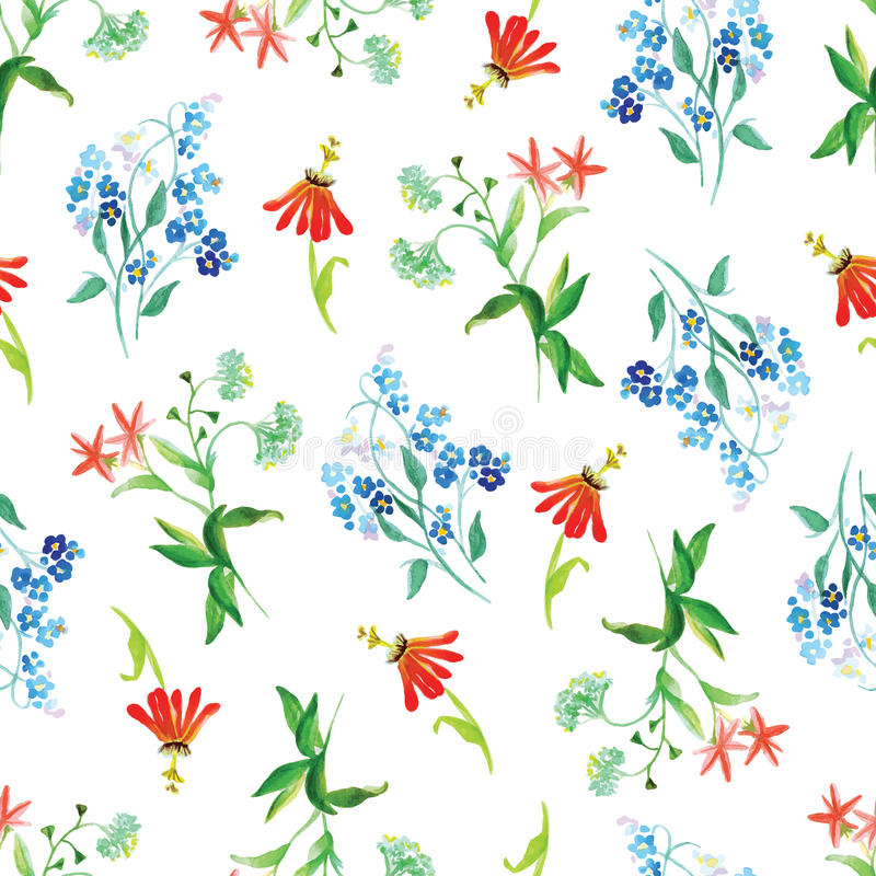Forget-me-not and red flowers watercolor seamless vector print royalty free illustration