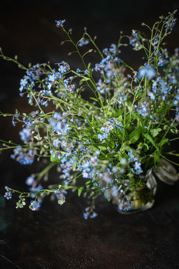 Forget-me-not`s bouquet in small glass jar on wooden stool, dark background royalty free stock photography