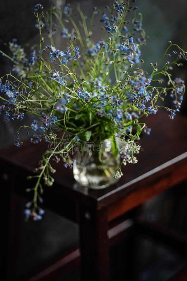 Forget-me-not`s bouquet in small glass jar on wooden stool, dark background stock photography