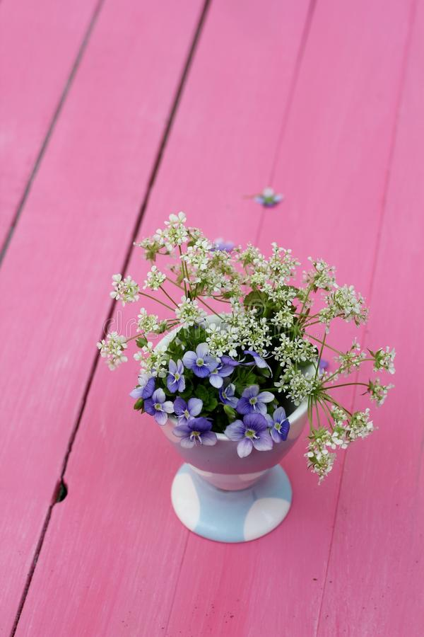 Forget Me Nots On Pink Stock Photo