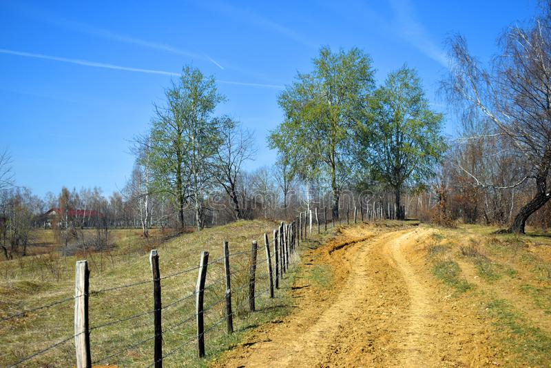Forgoten有铁丝网篱芭的乡下公路在一个美好的晴朗的春日 免版税库存照片