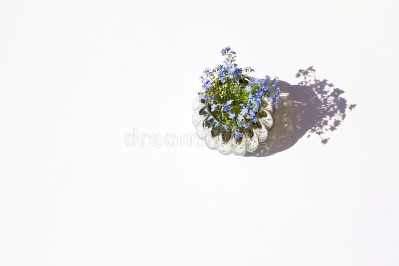 Forgotmenot in einem Glasvase mit Wasser auf weißem Hintergrundsonnenlicht und schöne Draufsichtebene der Schatten legen lokalisi stockfotos