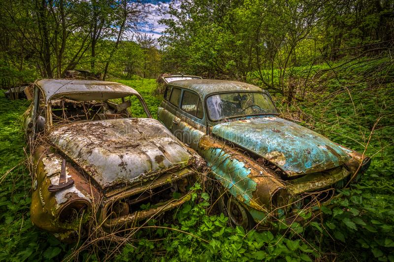 Forgotten car decaying in the garden stock image