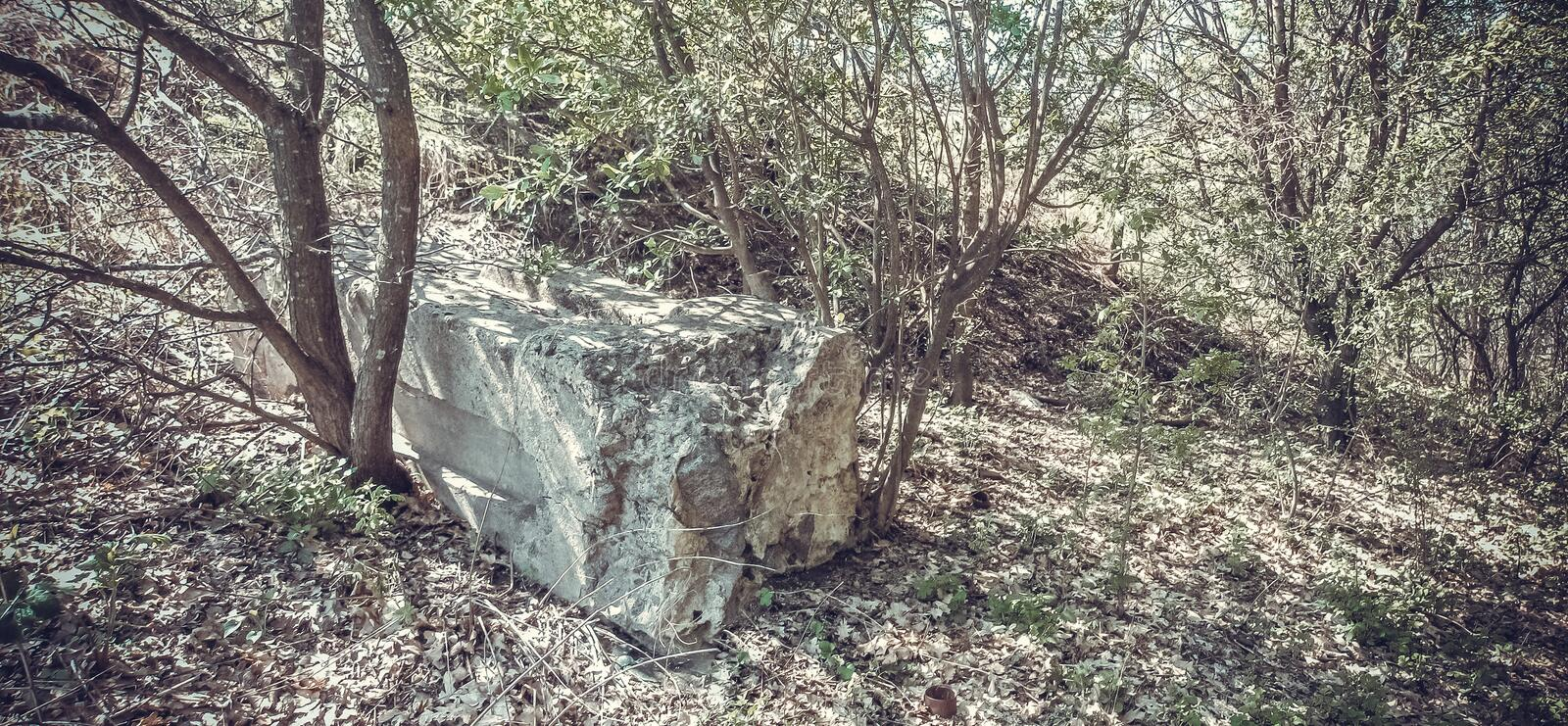 A forgotten grave in the woods. Ancient Cossack mass grave. Destroyed and desecrated by black archeologists monument. Ukraine, Poltava region. Places of former royalty free stock images