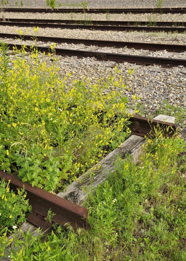 The forgotten line is closer than you know. Rail road track and old siding line next to active lines. Metaphor for many things including: you do can be cut off royalty free stock images