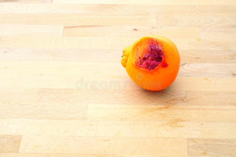 Forgotten snack, orange left to rot on the kitchen table stock photo