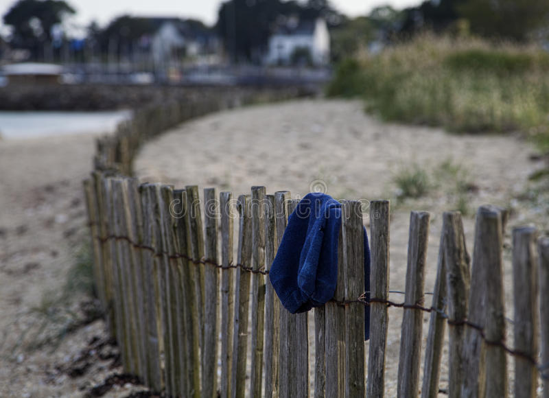 Forgotten swim trunks. A pair of forgotten swim trunks on a fence on the beach royalty free stock photography