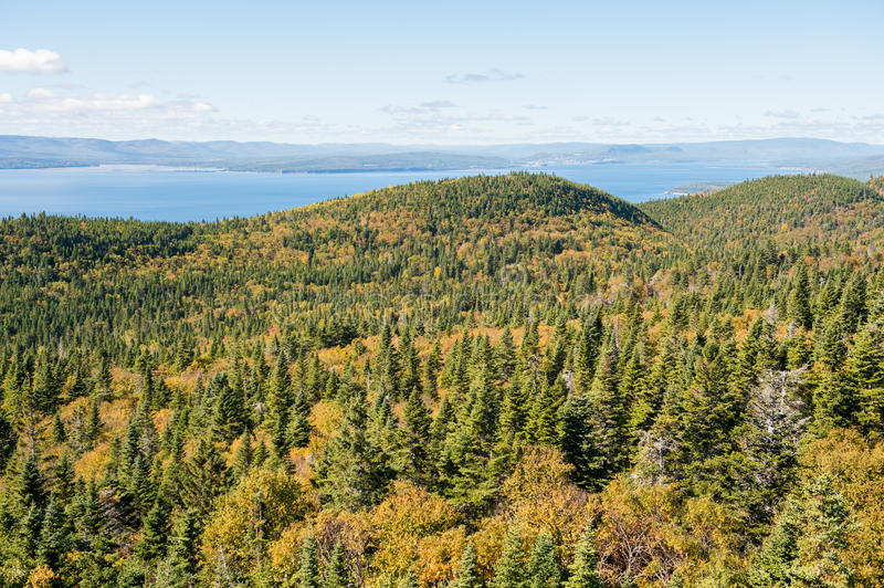 Forillon National Park, Gaspe Peninsula. View from Mont-St-Alban viewpoint in Forillon National Park, Gaspe Peninsula, Quebec, Canada stock photos