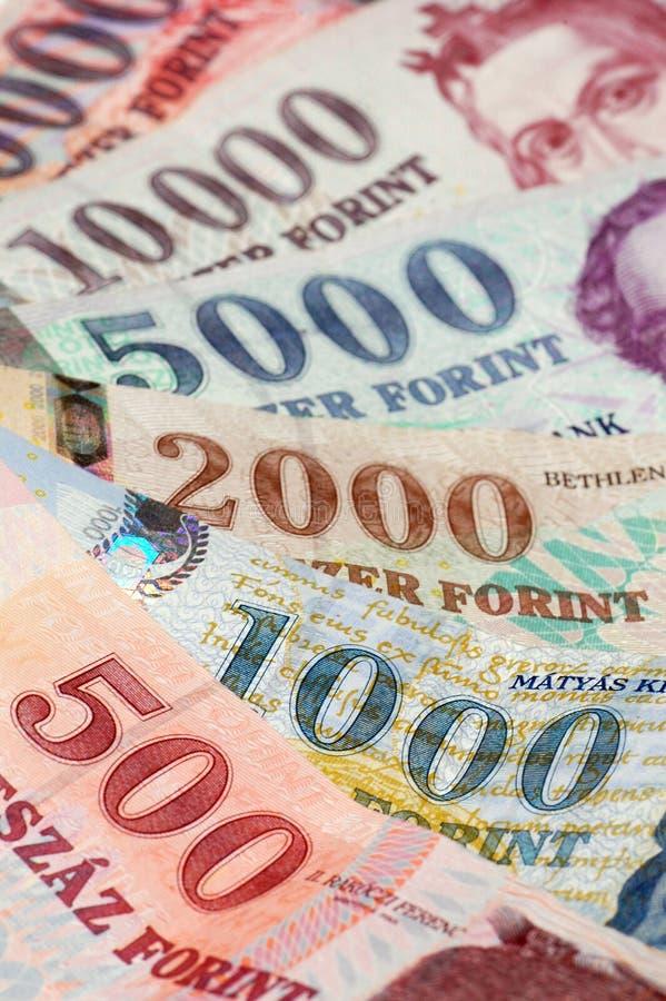 Forint hongroise photo libre de droits