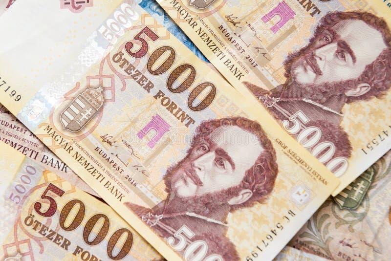 Forint hongroise d'argent image stock