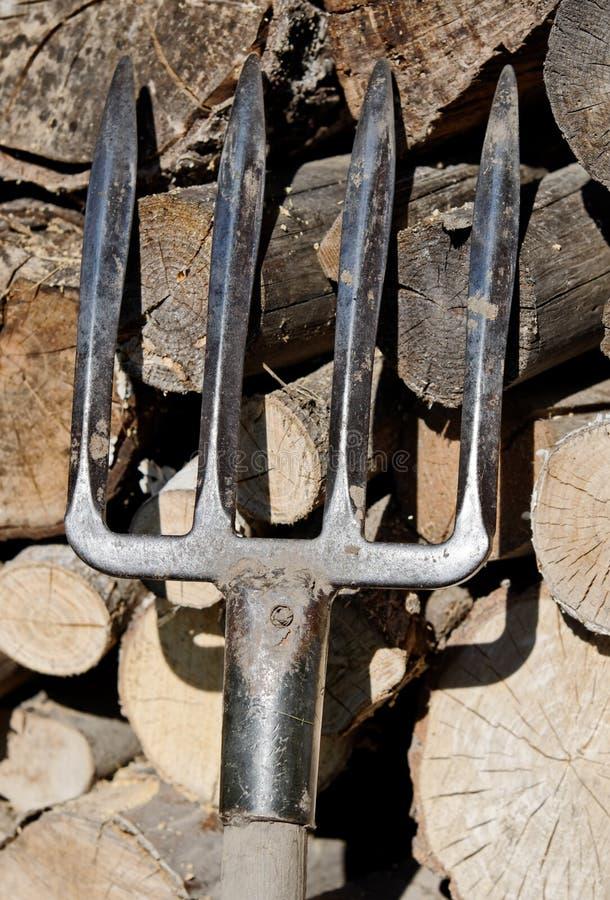 Fork fotografía de archivo libre de regalías