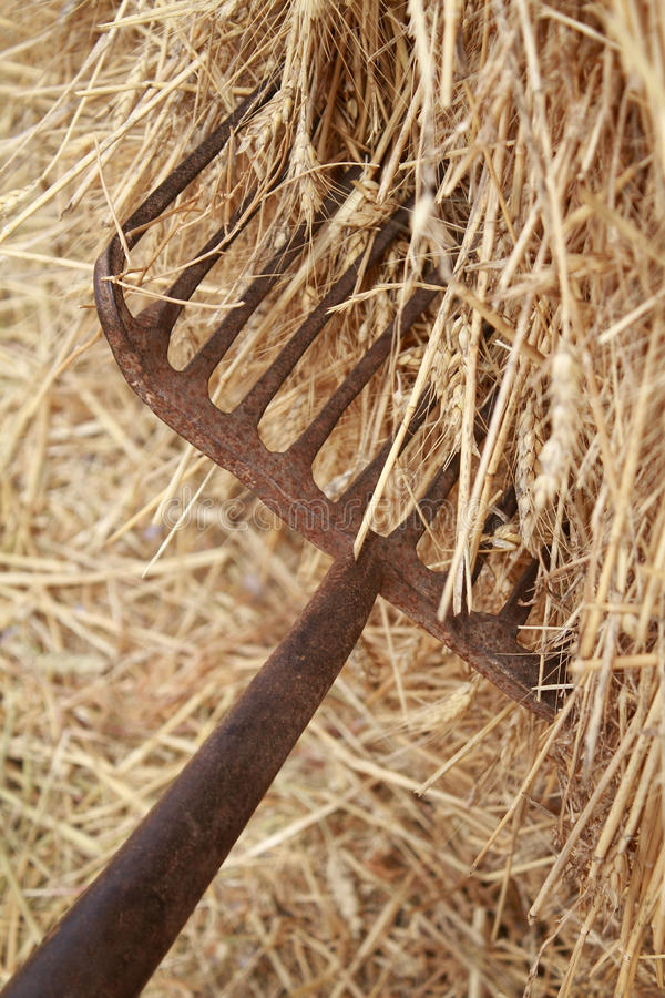 Free Fork And Hay Royalty Free Stock Photography - 23739207