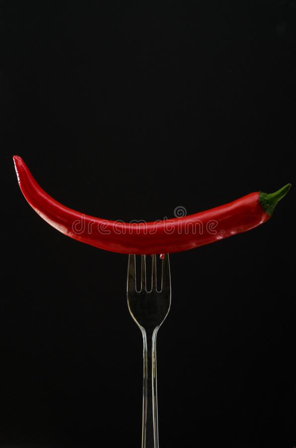 Fork with big red pepper and parsley royalty free stock image