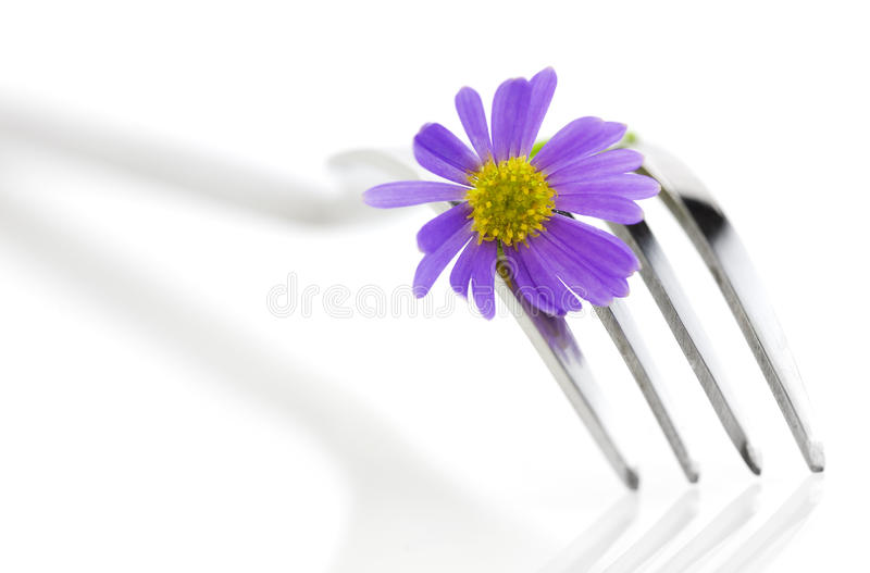 Fork and flower stock photography