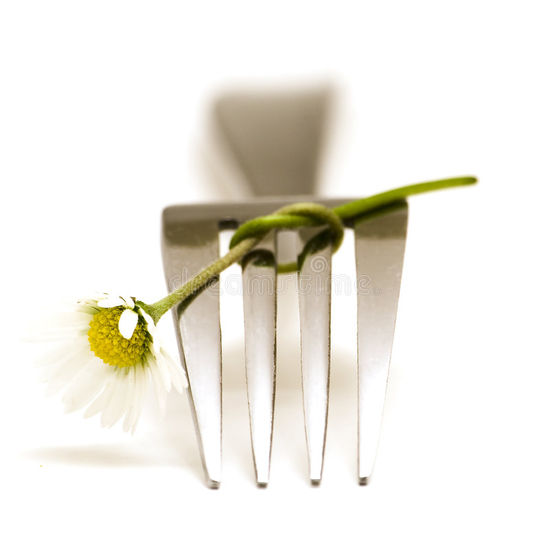 Fork and flower stock image